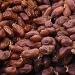 Dates Nutrition: Dates Calories, Dates Milk and Dates Fruit Benefits
