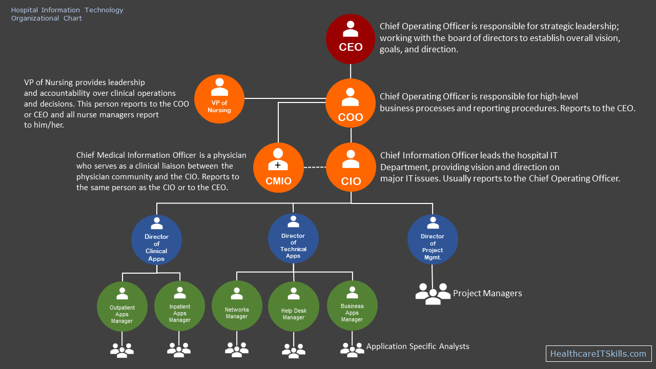 hight resolution of  hospital it department structure