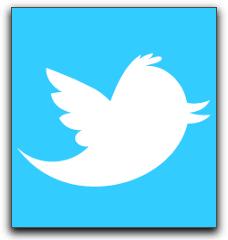 Tweet Your Naples Online Business