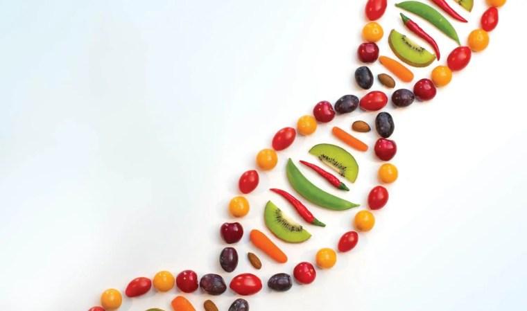 Stubborn Weight: Genetics or Diet? | El Paso Chiropractor