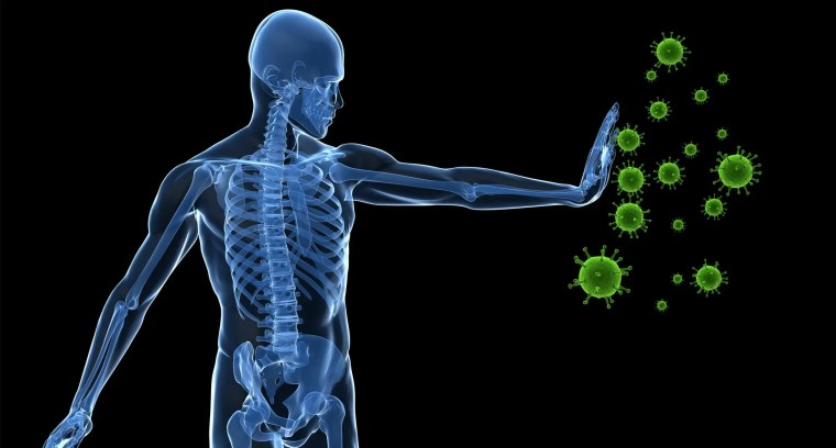 The Factors Of Increased Immunity | El Paso Texas Chiropractor