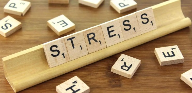Epigenetics: Stress In Relation To Chronic Disease | El Paso Health