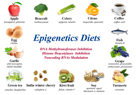 Image of the epigenetic diet.