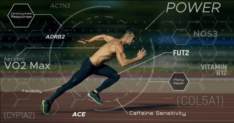 Sports Performance: Genetics Part 1