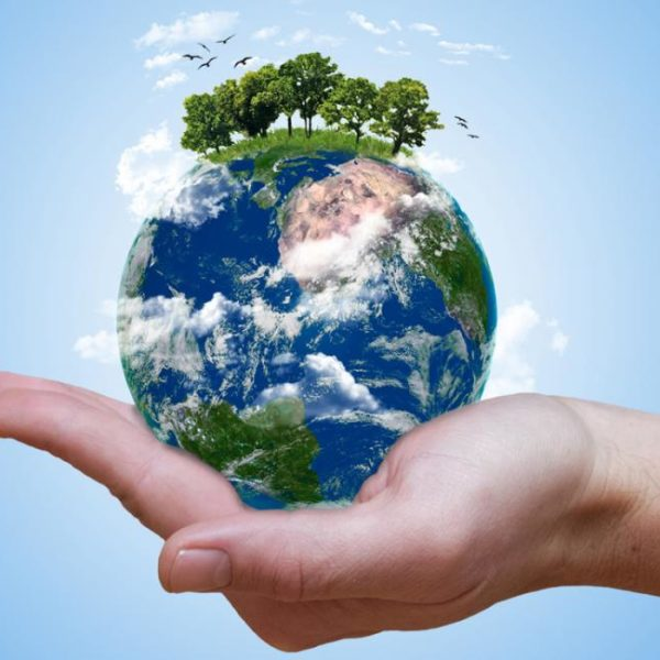 Health & Wellness Archives - Heal the Planet