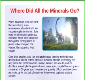 minerals research
