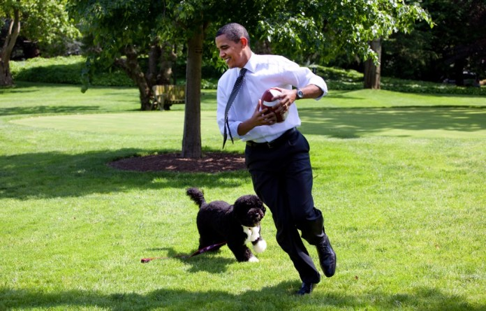 Image: President Barack Obama with Bo the dog