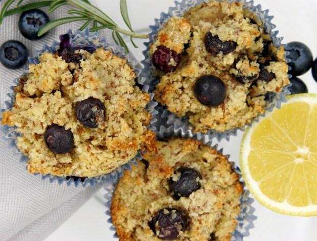 Paleo Friendly Grainless Blueberry Muffins