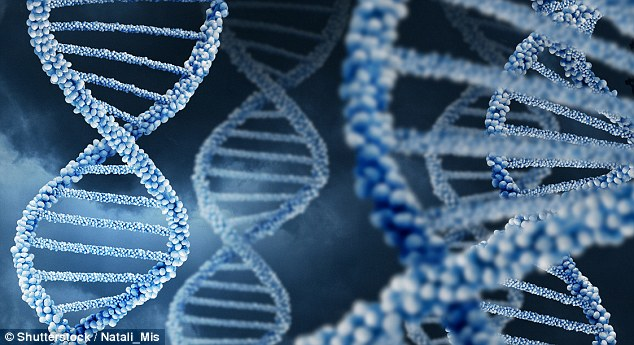 Autism Genes Identified Using New >> World S Largest Dna Study Of Autism Reveals 18 New Genes That Could