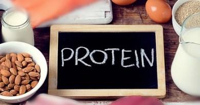 सीयू में रिसर्च : 428 प्रकार के प्रोटीन हमें कर सकते हैं बीमार