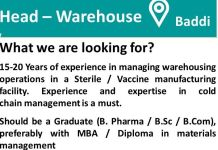 Panacea Biotec Urgently Opening for Head Warehouse  Apply Now