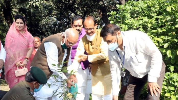 मुख्यमंत्री श्री चौहान ने मंत्रियों और विधायकों के साथ किया पौधारोपण