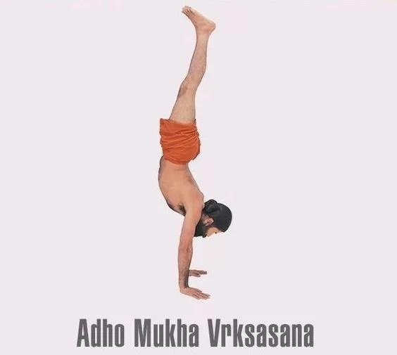 adho-mukha-vrikshasana