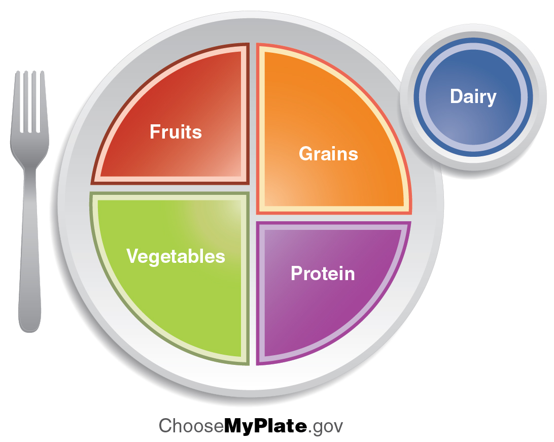 healthy plate diagram 86 chevy truck stereo wiring national nutrition month march 2015 bite into a