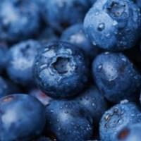 Blueberries Reduce Blood Pressure & Arterial Stiffness, Research Finds