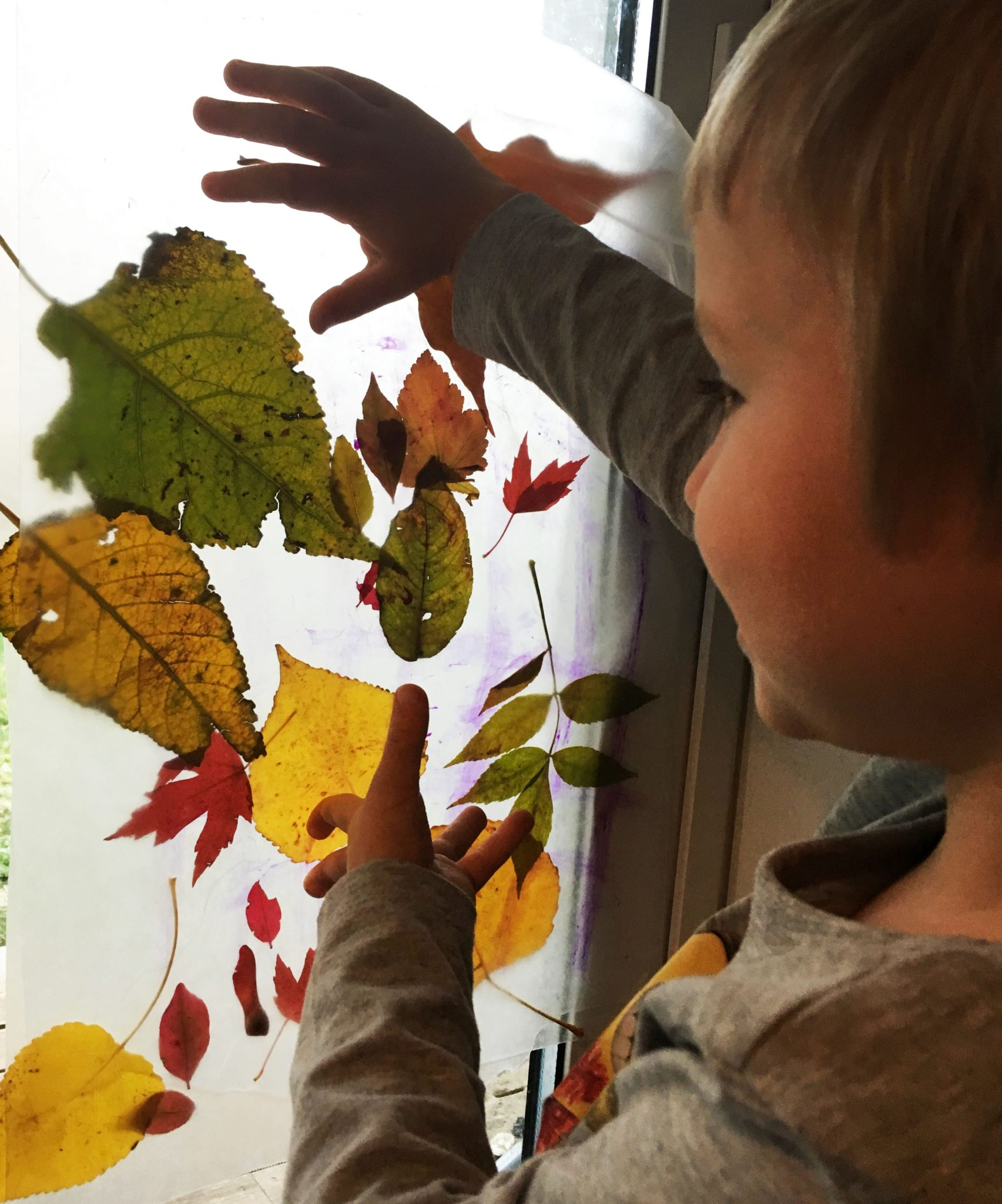 Wax Paper Autumn Leaf Stained Glass Easy And Beautiful