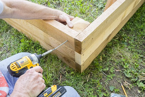 Do you want to garden but have poor soil, or limited space? Here's a step-by-step guide for building your own raised garden bed. It's easier than you may think!