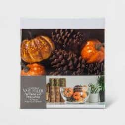 Here is a list of my favorite fall decor from Target this year. If you are looking for cute decor at an affordable price, be sure to check it out!