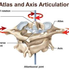 Pivot Joint Diagram Ge Refrigerator Wiring Problem Pictures Of Atlas Axis