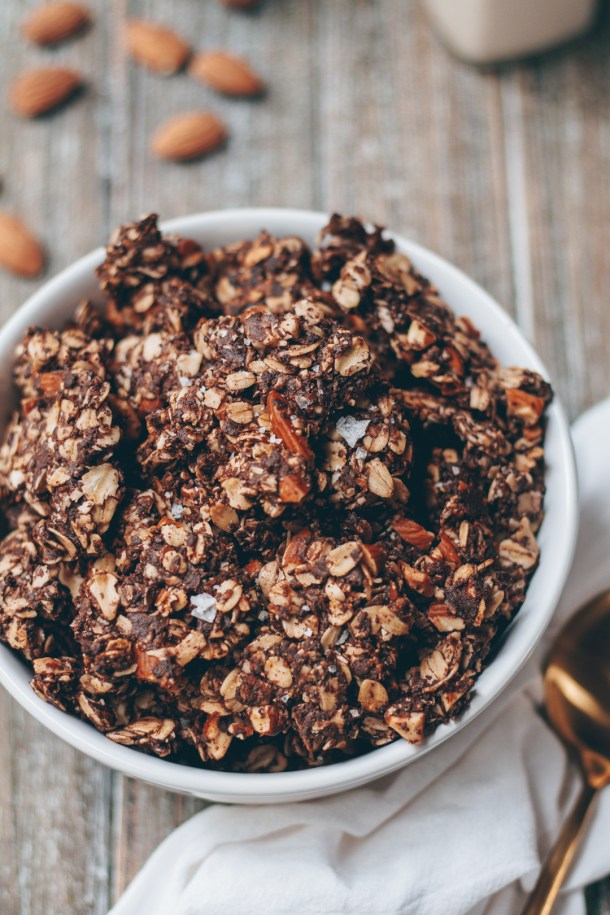 Chunky Almond Coconut Chocolate Granola