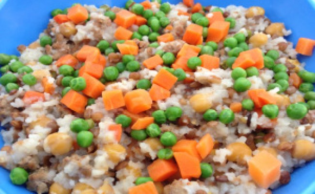 Home Cooked Dog Food Recipe Chicken Dinner For Your Dog