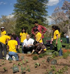 michelle obama sam kass show bancroft students how to plant a garden 4 9 09 [ 1280 x 847 Pixel ]