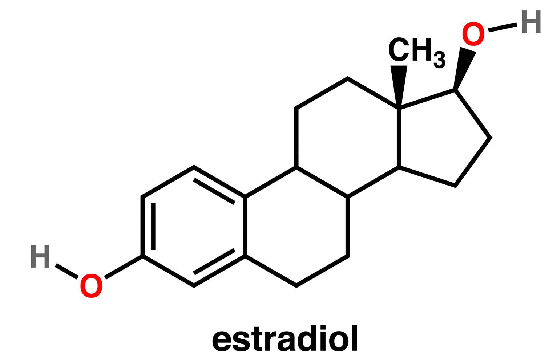 Estradiol function, normal estradiol levels, uses, test