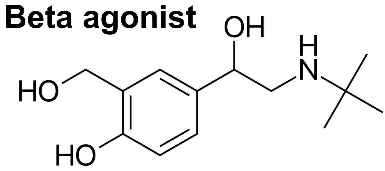 Beta adrenergic agonist, beta 1 agonist and beta 2 agonist