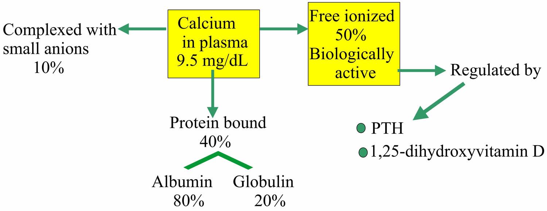 Calcium in urine normal calcium in urine high & low ...