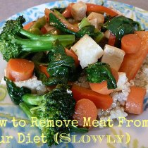How to Remove Meat From Your Diet (Slowly)