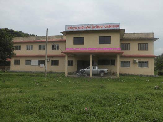 National Birds Disease Research Laboratory Nepal