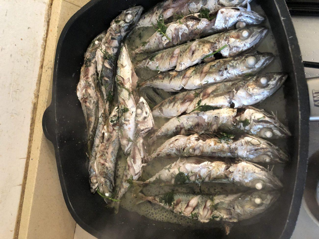 Lightly Fried Mackerel