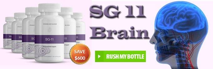 SG 11 Brain