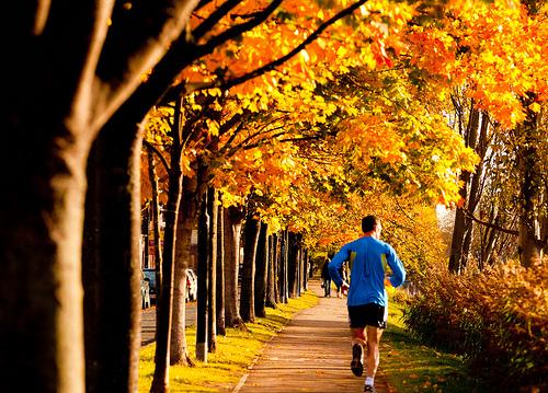 Image by healthonabudget.com