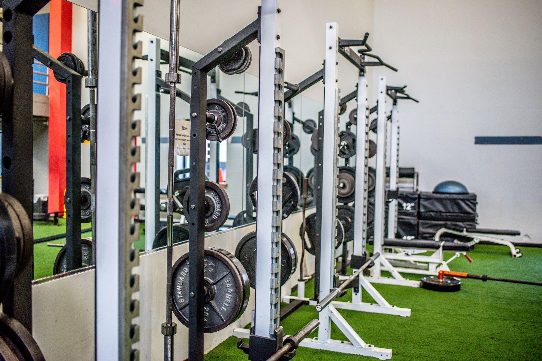Free Weights & Strength Equipment