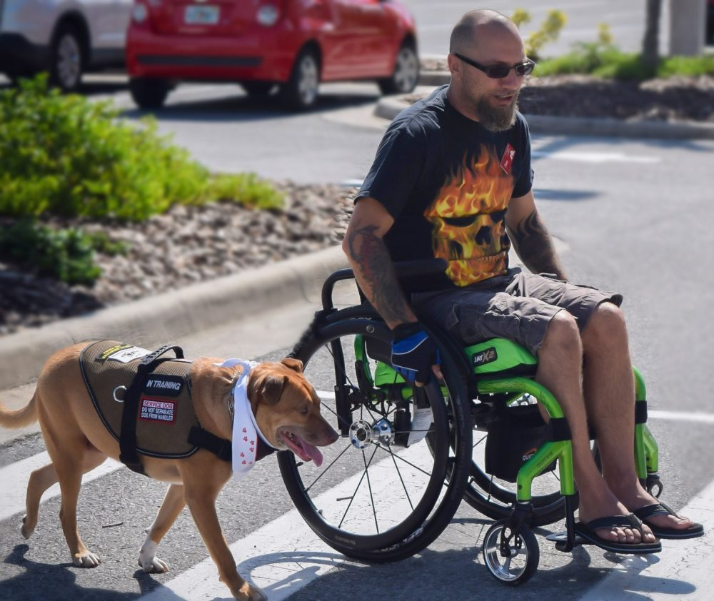 Social Work Professor Helps Show Efficacy of Service Dogs for Veterans with PTSD