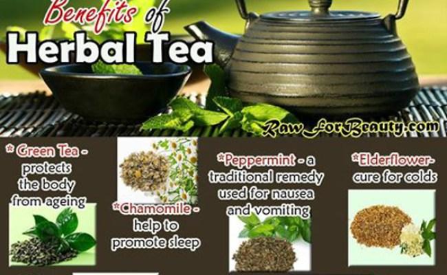 Nettle Leaf Benefits Hrf