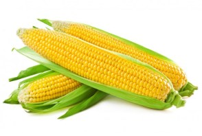 Is corn healthy or not?