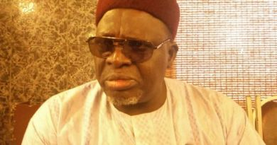 Reasons Borno State Tops Lagos In Birth Registration