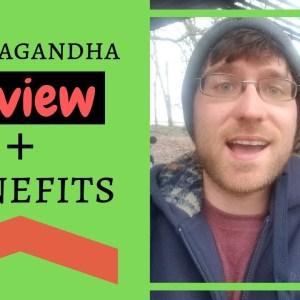 Ashwagandha Review (Benefits + My Experience) 2019