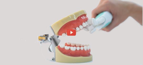 Triple-Headed Toothbrush [video]