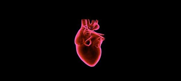 AI Detects Genetic Heart Condition from Wearable Data