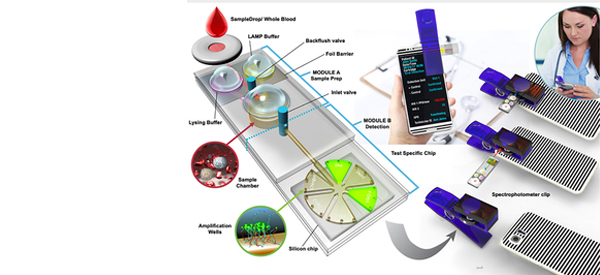 Smartphone Pathogen Test Device