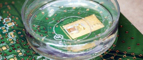 GT Cell sensor on chip