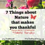 7 Things about nature that makes you thankful #Thankful Thursdays  week 12
