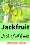 Jackfruit : Jack  of all fruits #AtoZ fruits