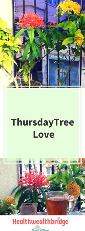 Thursday Tree Love 18