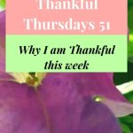#ThankfulThursdays 51:What I am Thankful for this Week