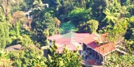 Darjeeling hotel at Chota Mangwa