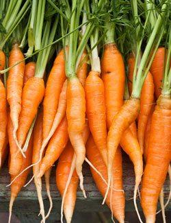10 Vegetables Highest in Potassium